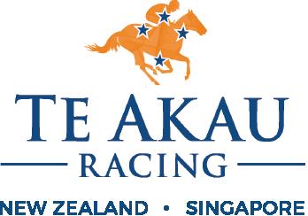 Te Akau Racing