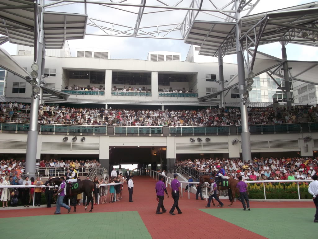 Te Akau Singapore Sunday Preview