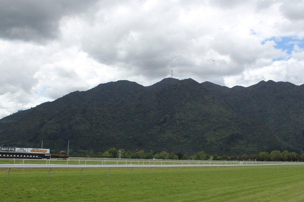 Te Akau Te Aroha Wednesday Preview