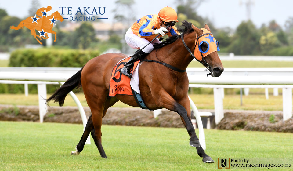 Te Akau Te Rapa Thursday Preview