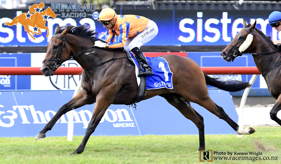 Te Akau Ellerslie Saturday Preview