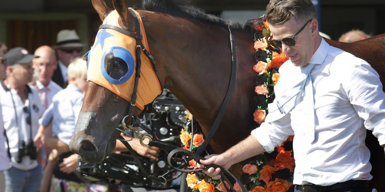 Richards Reflects on Rapid Milestone – 50 Grp/Listed Wins