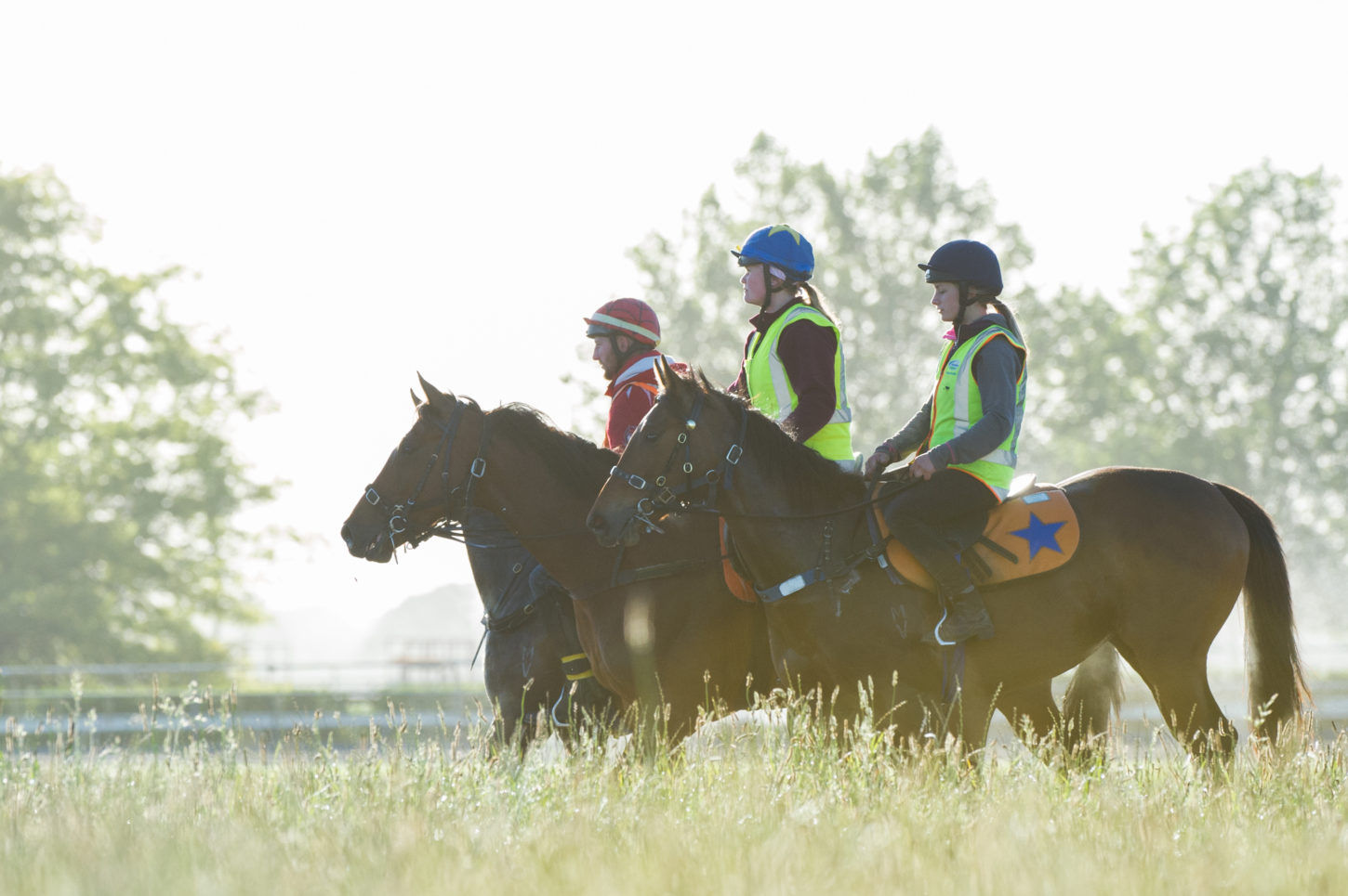 Te Akau Thursday Trackwork