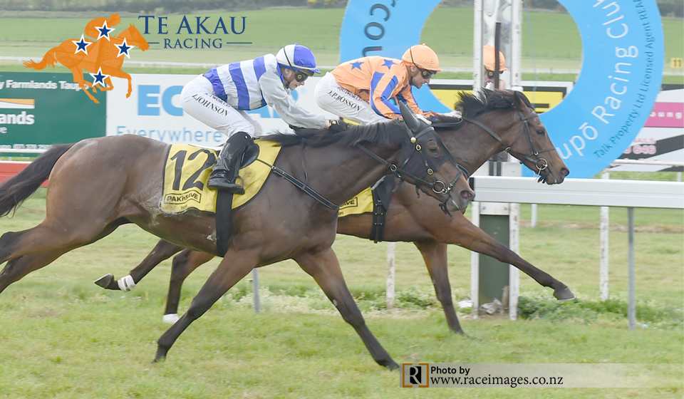 Te Akau Treble – No.2 Top Brass