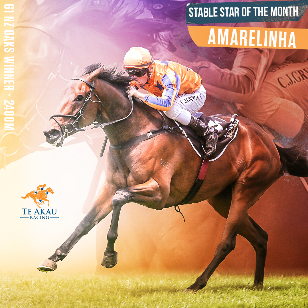 Te Akau Stable Star Of The Month – March